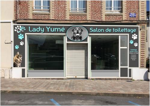 Lady yume